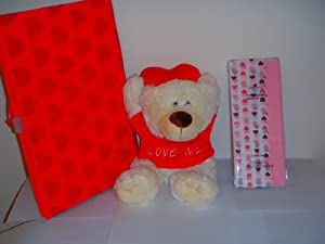 "Recordable Bear with Heart Gift Package ""Love Me"" 14"" Plush Bear"