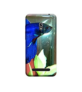EPICCASE Premium Printed Back Case Cover With Full protection For Asus Zenfone 5 (Designer Case)