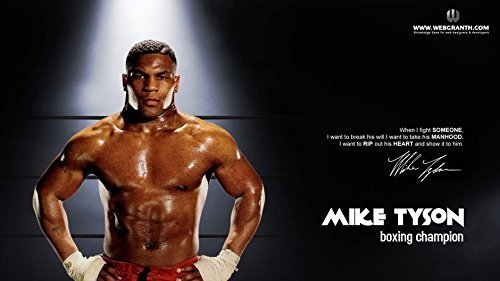 25x14 inch Mike Tyson Silk Poster 1GS3-3FB by FranksMod [並行輸入品]