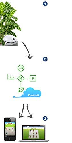 Koubachi Wi-Fi Plant Sensor 2 Outdoor (Für Gartenpflanzen: Analysiert Boden-Licht-Luftbeschaffenheit, Wetter und sendet Pflegehinweise) iOS und Android