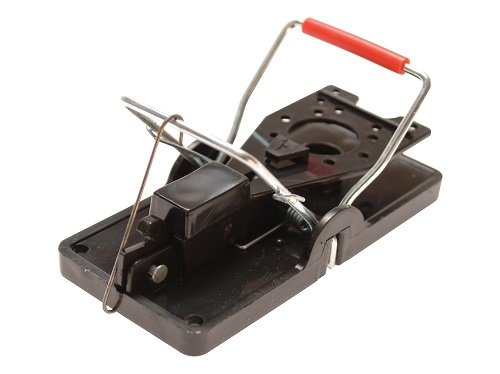 rentokil-advanced-mouse-trap-pack-of-2