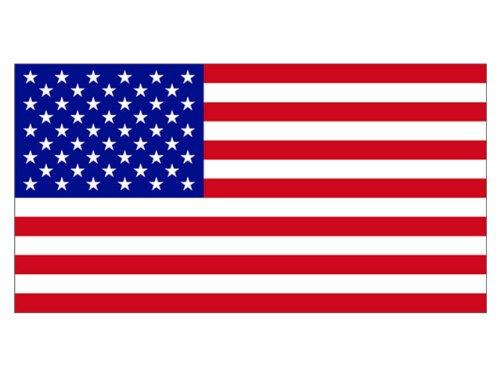 American Flag (Bumper Sticker)