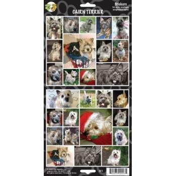 Cairn Terrier Sticker - Case Pack 24 SKU-PAS376258