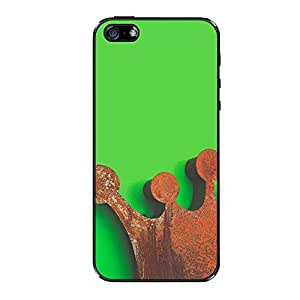Vibhar printed case back cover for Apple iPhone 5s RustedKing