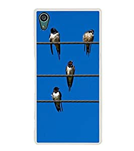 Birds Lined up on Wires 2D Hard Polycarbonate Designer Back Case Cover for Sony Xperia Z5 :: Sony Xperia Z5 Dual