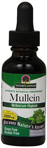 Natures' Answer Alcohol-Free Mullein Leaf, 1-Fluid Ounce (Oil Leaf Extract compare prices)