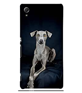 Grey Dog 3D Hard Polycarbonate Designer Back Case Cover for Sony Xperia Z4