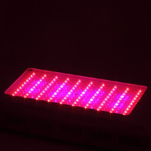 Koolertron New 300W Led Grow Light For Indoor Grow Green House Hot Sale Hydroponic System