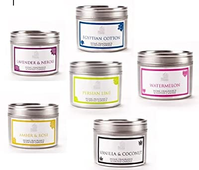 Shearer Spring Scented Candle Tins - 6 X 20 Hour Burn 6cmx47cm by shearer candles