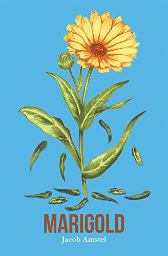 marigold-english-edition