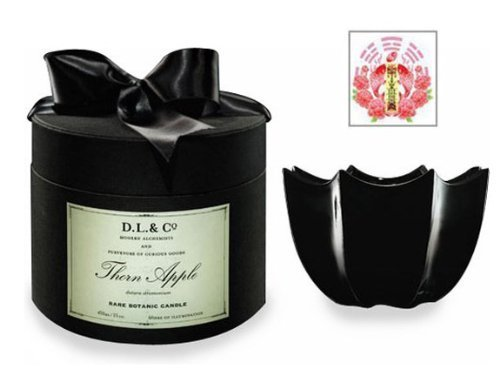 Thorn Apple Aromatherapy Perfume Home Fragrance 10 oz Candle by D.L. & Co. & Original Artwork Chinese Love Spell Symbol Pocket Card Gift Set