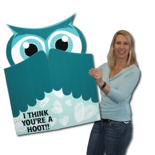 3' x 4' Giant Owl Cut Valentine's Day Card W/Envelope - Perfect Gift for Your Valentine!