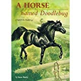 img - for A Horse Name Doodlebug book / textbook / text book