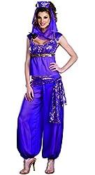 Dreamgirl Women's Sexy Harem, Genie Costume Ally Kazam