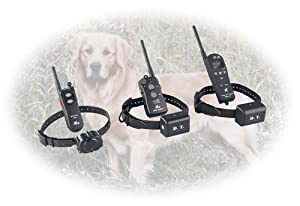 Micro-iDT Super Trainer 1 Dog Sys