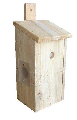 BIRD BOX WITH COLOUR CAMERA KIT - 30m - PREMIUM QUALITY