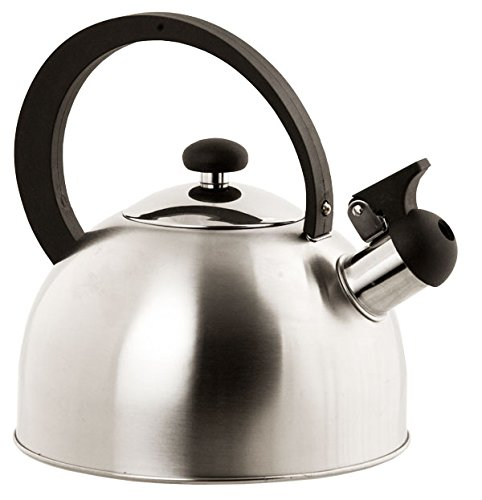 Home Basics Stainless Steel Tea Kettle, Silver
