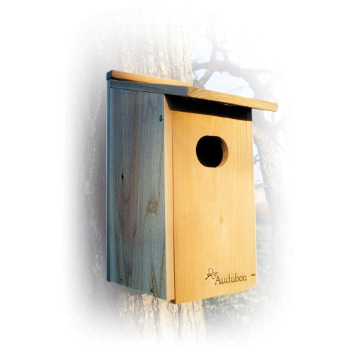 Wood Duck Nest Box Plans How To Build A Wood Duck Nesting Box