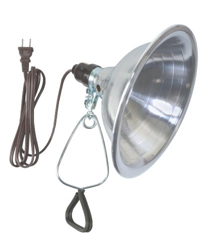 Woods 0151 18/2-Gauge SPT-2 Clamp Lamp with Reflector, 8.5-Inch, 150-Watt, 6-Foot