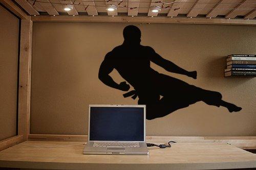 Vinyl Wall Art Decal Sticker Karate Flying Kick Martial Arts #225