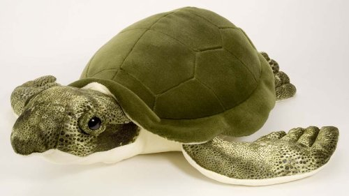 "Cuddlecove Green Sea Turtle 20"" By Wild Republic"