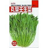 京都の特産品!丸葉壬生菜(一般種) 数量:8ml