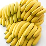 【2~5営業日出荷】箱売りバナナ 12.5kg 6房入 ランキングお取り寄せ