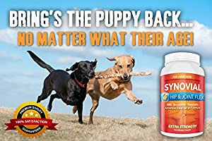 Extra Strength Glucosamine for Large Dogs ✚ Includes Chondroitin & MSM for Maximum Joint Relief ✚ Made in USA for 40 Years & Trusted By Veterinarians ✚ A Fast-Acting Solution for Large Dogs Suffering from Arthritis Pain, Stiff Joints and Flare-ups C