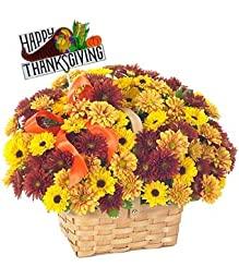 The blessedness of Kindness - eshopclub Same Day Thanks giving Flower Delivery - Online Thanksgiving Flower - Thanksgiving Flowers Bouquets - Send Thanks giving Flowers