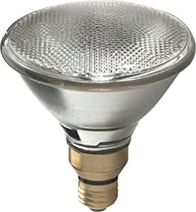 GE 25679 100-Watt Halogen Flood PAR38 Light Bulb, 2-Pack
