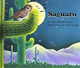 Saguaro (Books for Young Learners)