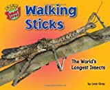 img - for Walking Sticks: The World s Longest Insects (Even More Supersized!) book / textbook / text book