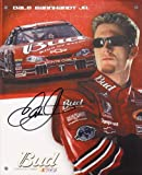 AUTOGRAPHED 2002 Dale Earnhardt Jr. #8 Budweiser Racing Team 8X10 NASCAR SIGNED Hero Card w/ COA