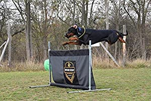 DINGO GEAR Hurdle Jump for Dog Training with Height Adjustment to 1 Meter, Obstacle Metal Built with Military Fabric, Handmade IPO Frame S02900 (Color: Black, Tamaño: 1 M. WIDE)