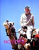 大きな写真、「アラビアのロレンス」ラクダのピーター・オトゥール