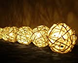 New Hight Quality White Rattan Ball Patio Party String Lights (20/set)