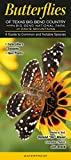 img - for Butterflies of Texas Big Bend Country incl. Big Bend National Park & Davis Mtns.: A Guide to Common & Notable Species (Quick Reference Guides) book / textbook / text book