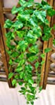 Domire Artificial Fake Hanging Vine P...