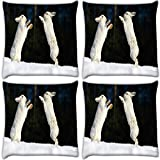 Snoogg Hiding Story Pack Of 4 Digitally Printed Cushion Cover Pillows 14 X 14 Inch