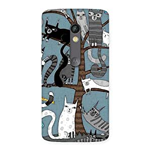Gorgeous Cat On Trees Print Back Case Cover for Moto X Play
