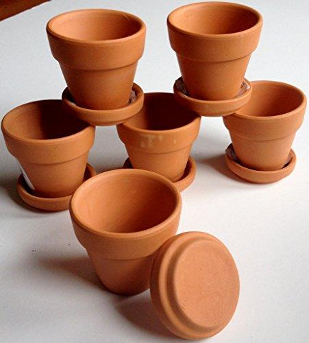 pennington-mini-terra-cotta-2-pots-with-saucers-6-pack