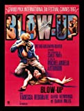 BLOW UP * BLOW-UP PHOTO MODEL PHOTOGRAPHY PHOTOGRAPHER SWINGING SIXTIES CineMasterpieces FRENCH ORIGINAL MOVIE POSTER 1969