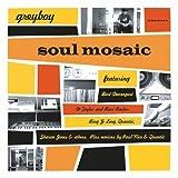 echange, troc Greyboy - Soul Mosaic : a case study in beats, soul and funk