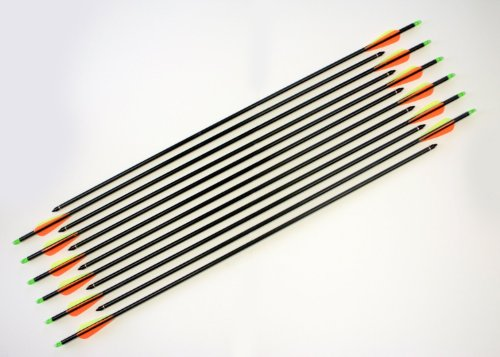 Huntingdoor-31-Premium-Fiberglass-Archery-Target-Practice-Arrows-with-Screw-In-Tips-for-Recurve-or-Compound-Bow