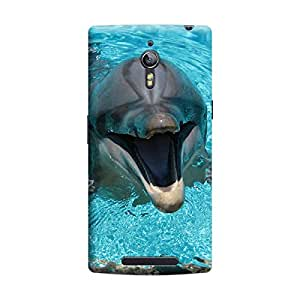 Ebby Premium Printed Mobile Back Case Cover With Full protection For Oppo Find 7 (Designer Case)