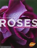 Roses : Les meilleures variétés pour petits jardins