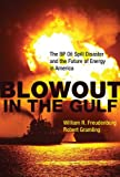 Blowout in the Gulf: The BP Oil Spill Disaster and the Future of Energy in America (MIT Press)