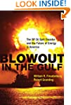 Blowout in the Gulf: The BP Oil Spill...