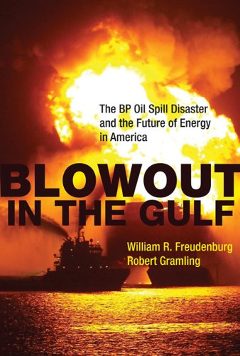 Blowout in the Gulf: The BP Oil Spill Disaster and the Future of Energy in America PDF
