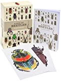 Patrice Bouchard A Box of Beetles: 100 Beautiful Postcards